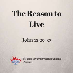 Reason to Live