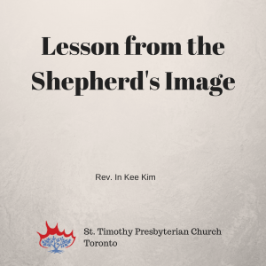 Lesson from the Shepherd's Image