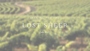 Seeking for the Lost Sheep