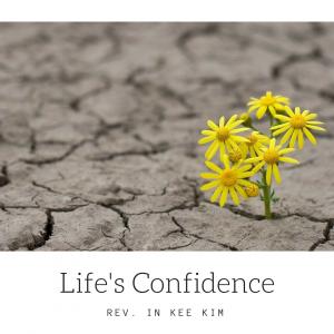 Life's Confidence
