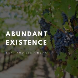 Abundant Existence