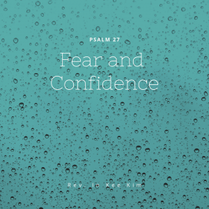 Fear and Confidence