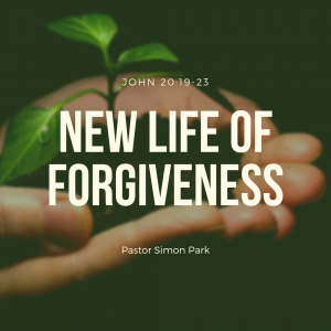 New Life of Forgiveness