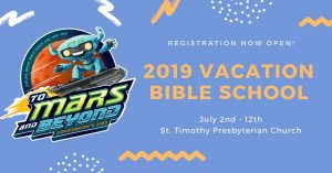 VBS Reflections