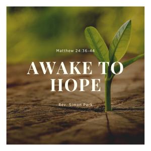 Awake to Hope