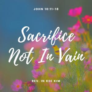 Sacrifice Not In Vain