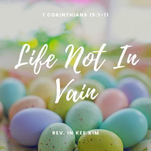 Life Not In Vain