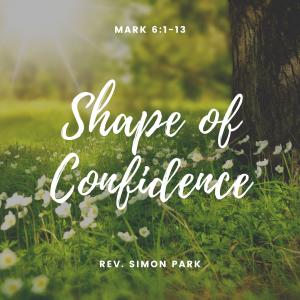 Shape of Confidence