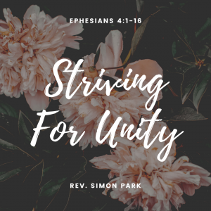 Striving for Unity